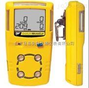 进口氨气测漏仪,氨气检测仪,氨气报警器 氨气检漏仪,氨气泄露报警仪